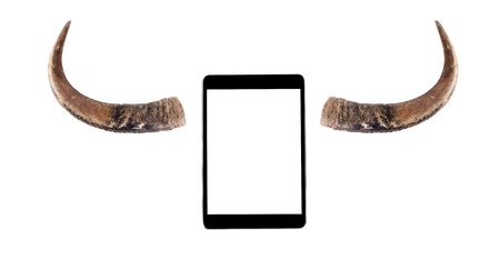 death head holding: Touch screen tablet with buffalo horns isolated on white - Stupid concept.