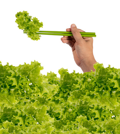 korean salad: lettuce on chopsticks in hand isolated on a white background.