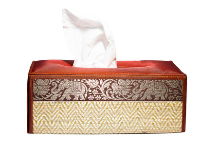Facial Tissue and Elepant tissue box Thai style. photo