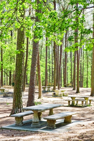 Place for picnic photo