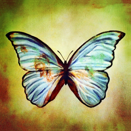 painting of blue butterfly  photo