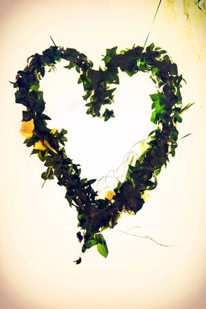 Green floral heart Stock Photo