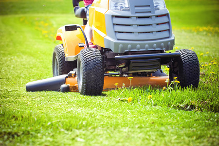 blade of grass: Closeup of mower cutting the grass