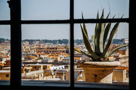 The view of Rome from the Vatican.