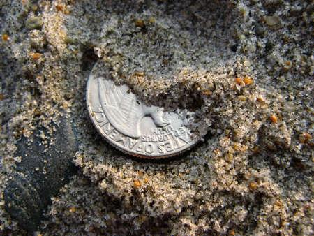 A lucky quarter hidden by some sea sand.