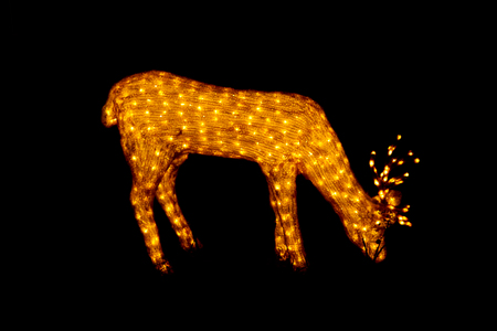 lighted: Golden lighted christmas reindeer at night .