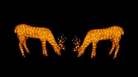 lighted: Golden lighted christmas reindeer at night .