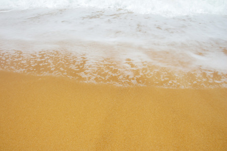 sandy brown: background of sand from  the sea.