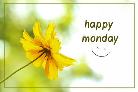 幸せ本文抽象ぼやけて黄色花月曜日ははがきに使用またはウェブサイトに投稿できます。