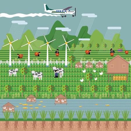 Boerderijen, windmolens, vliegtuig