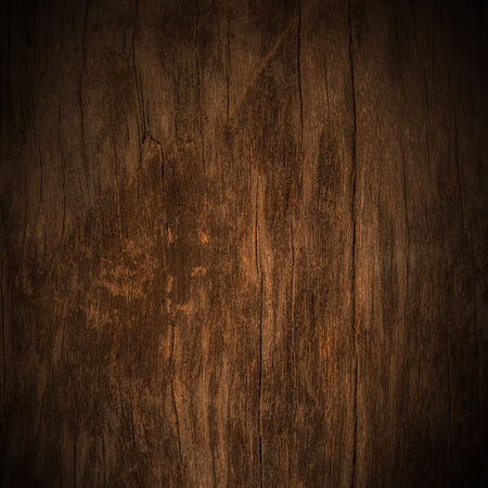 wood background texture: wood texture