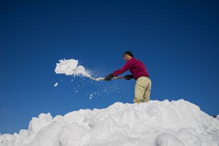Japanese snow SR.