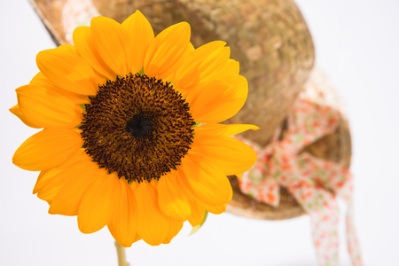 Summer images sunflower and straw hat