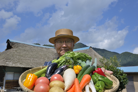 Senior smiles have been harvesting vegetables in country living