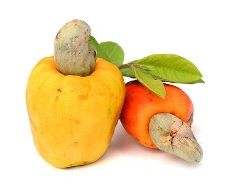 Brazil Caju ripe fruit thing ..