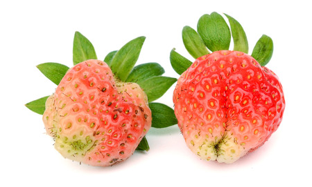 Strawberry isolated on white cutout background