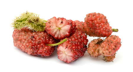 mulberry isolated on white background Banco de Imagens