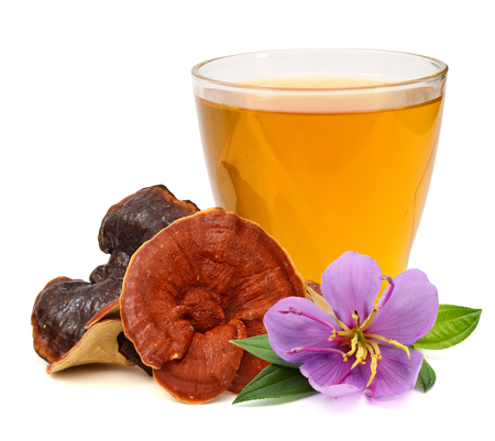 Ganoderma Lucidum tea with Ling Zhi Mushroom.