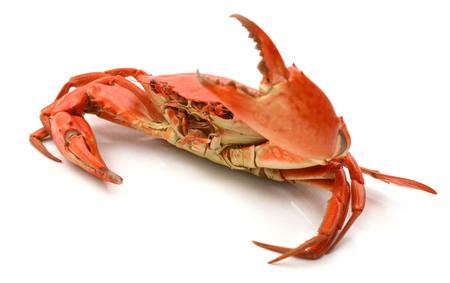 Boiled crabs prepared