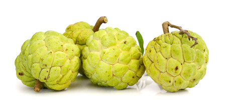 Custard apple isolated on white background Standard-Bild