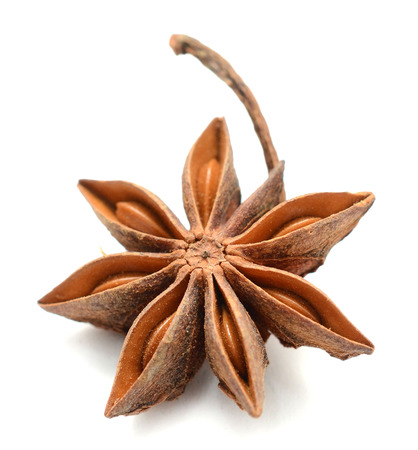 Single dried anise star isolated on white