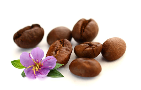 Coffee Bean with white background Foto de archivo - 116705645