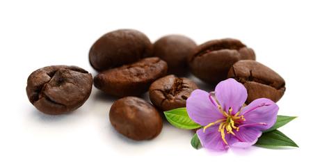 Coffee Bean with white background Foto de archivo - 116705647