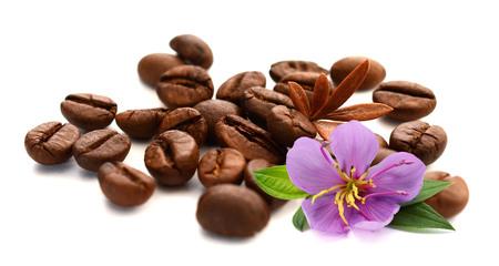 Coffee Bean with white background Foto de archivo - 116705652