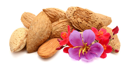 tasty almonds nuts isolated on white background Archivio Fotografico - 118101256