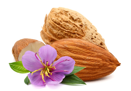 almonds nuts isolated on white background Archivio Fotografico - 118101345