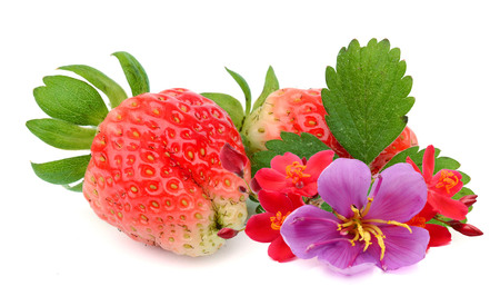 Strawberry macro with green mint leaves isolated on white Archivio Fotografico - 118102141