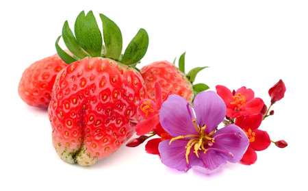 Red berry strawberry isolated on white background