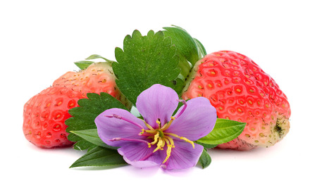 Strawberries with leaves and flower Isolated on a white background