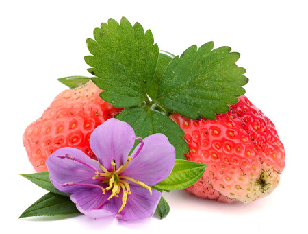 Strawberries with leaves. File contains clipping paths.
