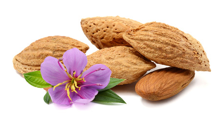 heap of almonds in their skins with leaf on a wooden table with blurred garden background.