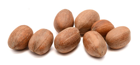 Pecan nuts. Isolated on white background