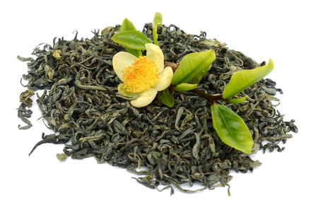 Heap of dry tea with fresh green tea leaves isolated white background. real Chinese tea bushes Archivio Fotografico - 119796161