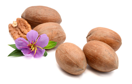 pecan in a wooden bowl with leaves isolated on white background Banco de Imagens