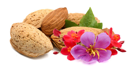 Almonds nuts isolated on white Archivio Fotografico - 119796537