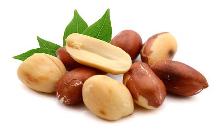 Erdnüsse lokalisiert auf weißem Hintergrund.