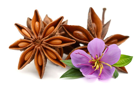 Aromatic star anise over white background