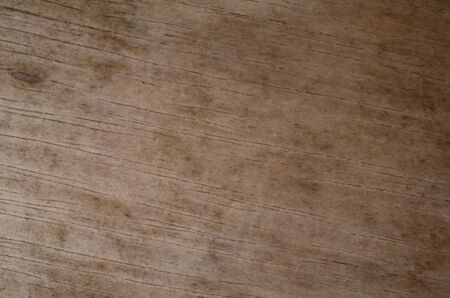 abstract of wood texture background 免版税图像