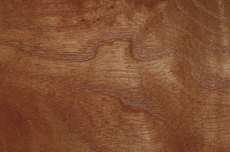 Light soft wood surface as background, wood texture. Archivio Fotografico - 133359325