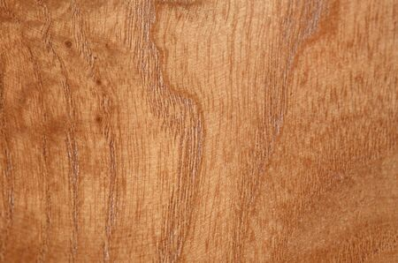 Light soft wood surface as background, wood texture. Archivio Fotografico - 133359329