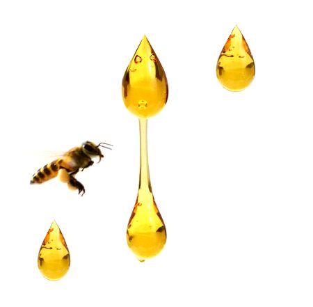Honeycomb and pot of fresh honey.