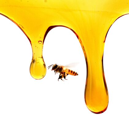 pouring organic honey from dipper into glass jar
