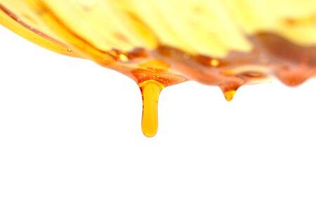 Sweet honey isolated on white background