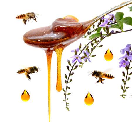 Honey comb.