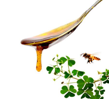 Honey wave
