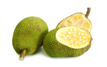 Jackfruit with isolated on white Banque d'images